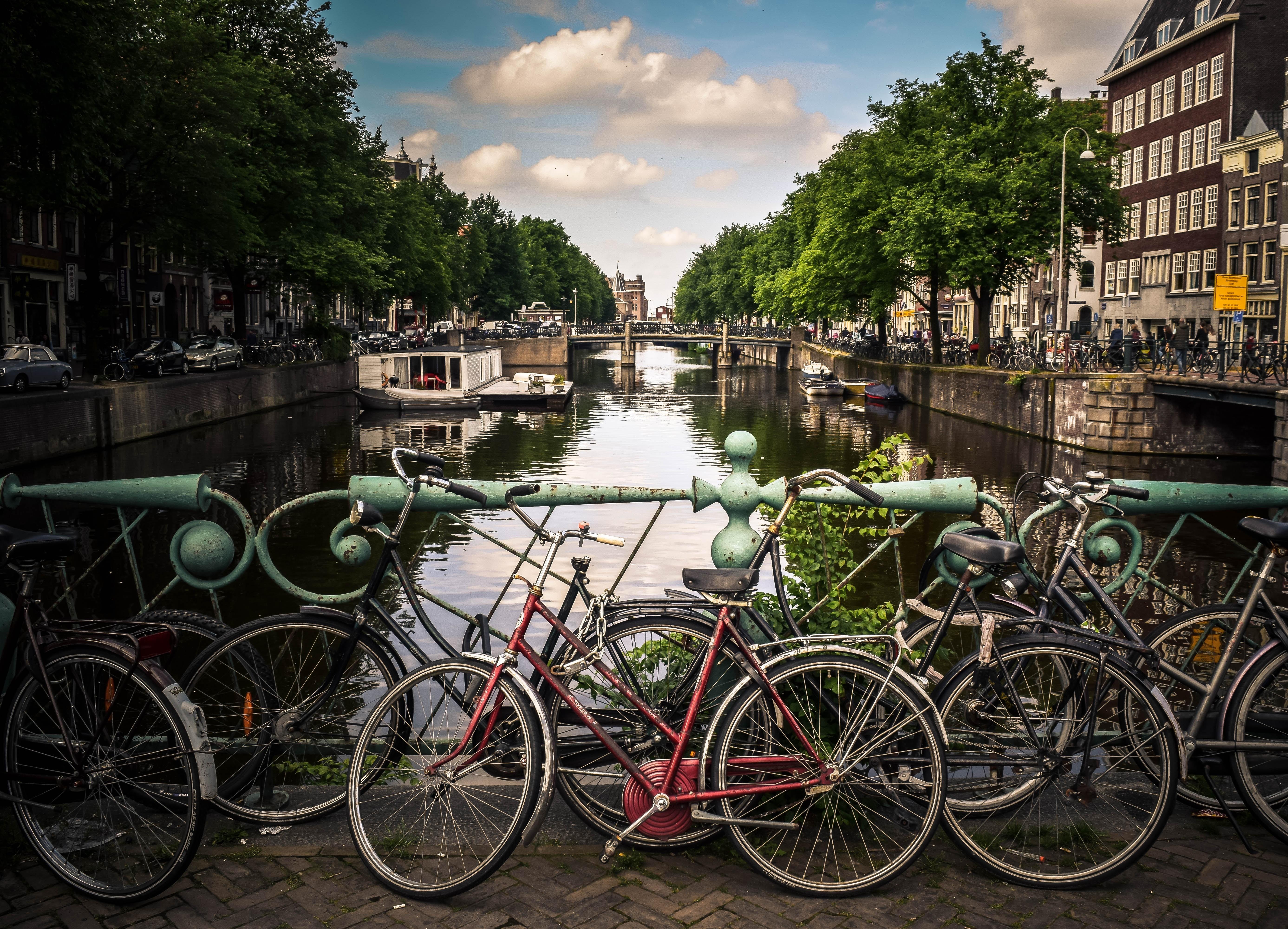 Amsterdam_City ESOMAR 70th Congress_Netquest.jpg